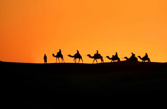 Marrakech Luxury Desert Tours / Safaris